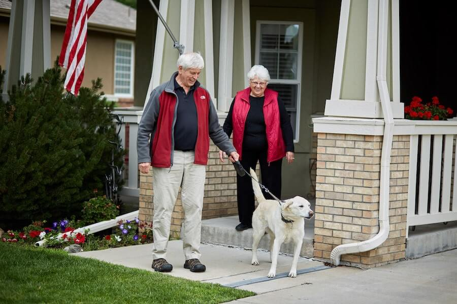 Seniors walking a dog