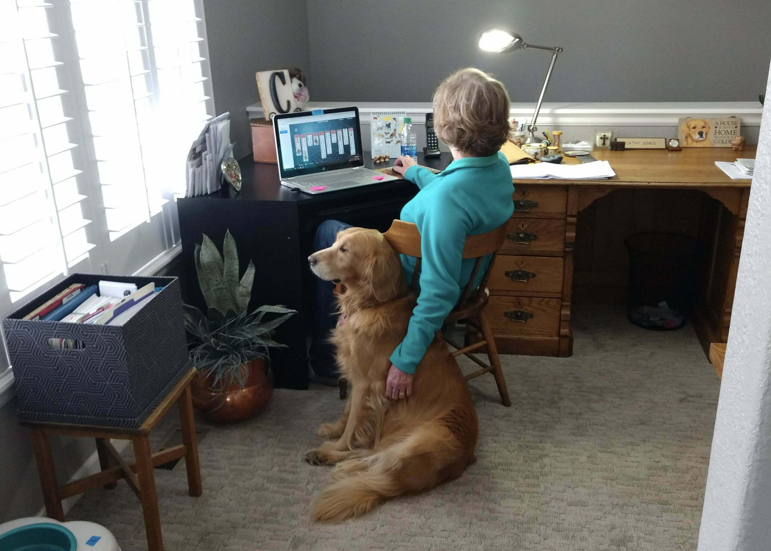 senior woman sitting at desk with her dog