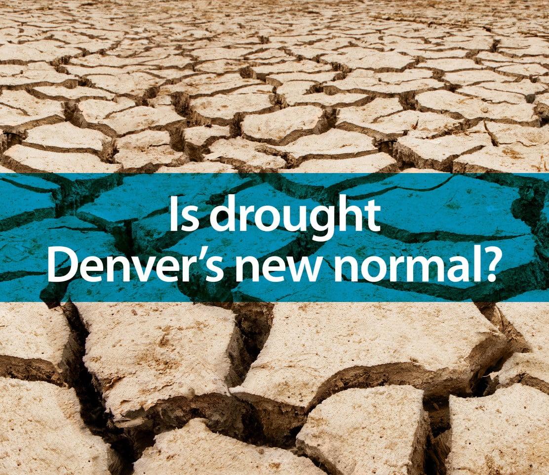 Denver Water at Holly Creek